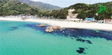 空撮動画で故郷に関心 美浜のNPO、コロナ受け100本配信 空き家増阻止へ「愛着持ち続けて」