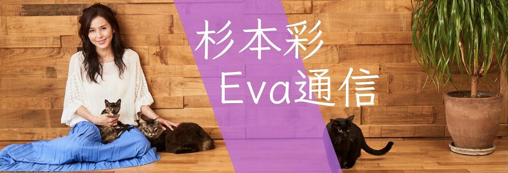 杉本彩のEva通信 犬や猫、ペット 動物たちの今