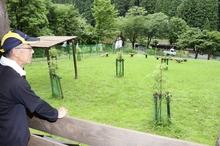 手作りドッグランがおおい町に完成 八ケ峰家族旅行村、利用者に好評