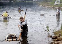 資源守りつつぷっくりシジミ次々と 美浜・久々子湖で漁最盛期