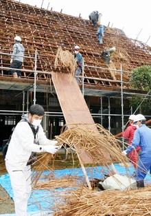 おおいの古民家解体、カヤ下ろし 築230年、町内に移築しカフェに