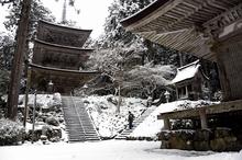 雪化粧の寺、水墨画のような風景 小浜の明通寺、荘厳さ増す