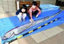 リュウグウノツカイ若狭町で捕獲 福井県海浜自然センターで展示